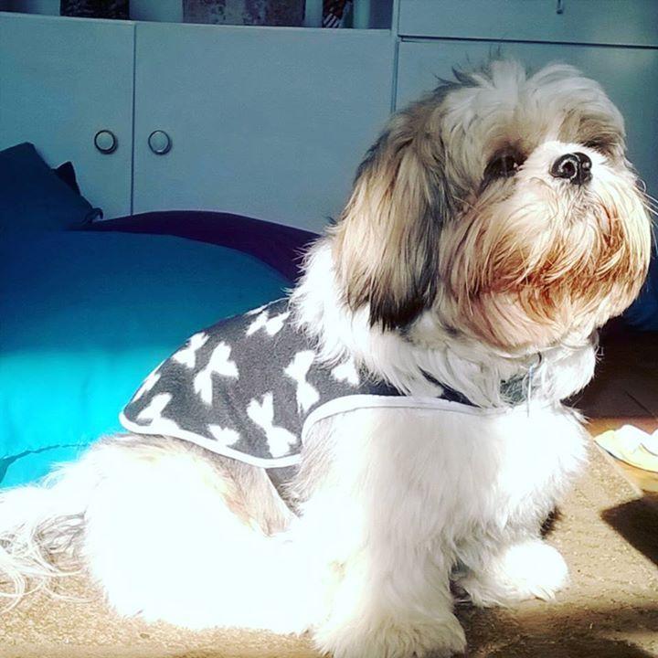 Curtindo um Sol