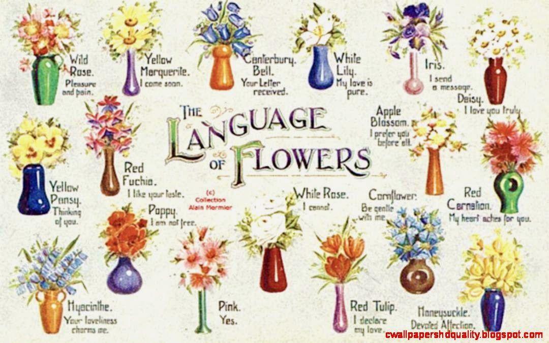 wicca and flowers - Google zoeken