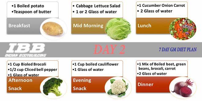 gm diet indian version vegetarian pdf