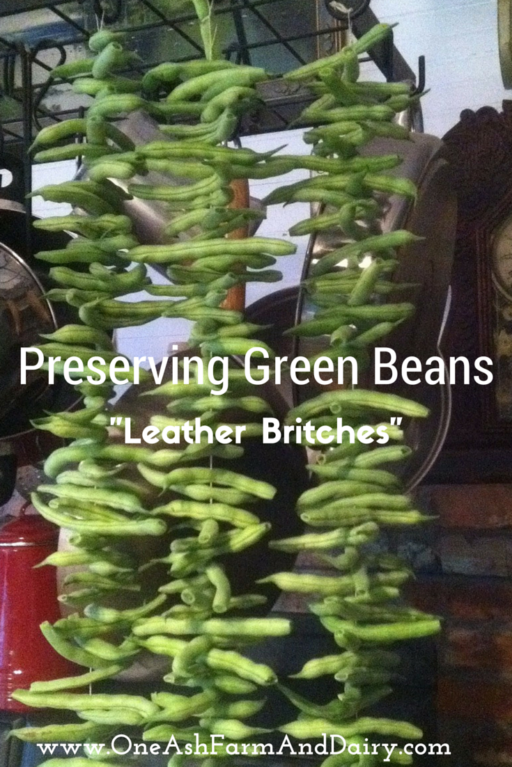 One Ash Farm and Dairy Homestead: Preserving Green Beans- Leather Britches