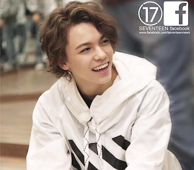 Am I the only one who thinks Hansol--I mean, Vernon (I mean Hansol