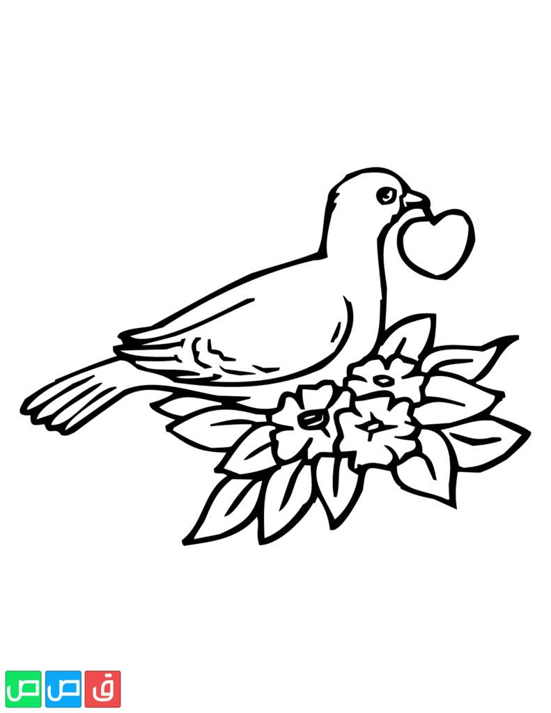 Pin On رسومات اطفال للتلوين حيوانات