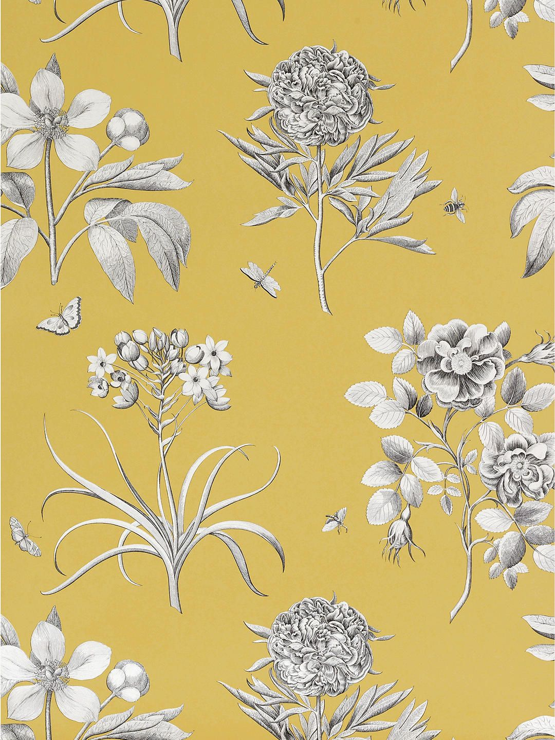 Sanderson Wallpaper, Etchings and Roses DPFWER104, Yellow