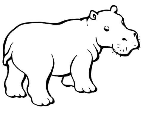 Baby Hippo Coloring Page From Hippopotamus Category Select From 28148 Printable Crafts Of Cartoons Nature Anima Hippo Tattoo Hippo Drawing Animal Caricature