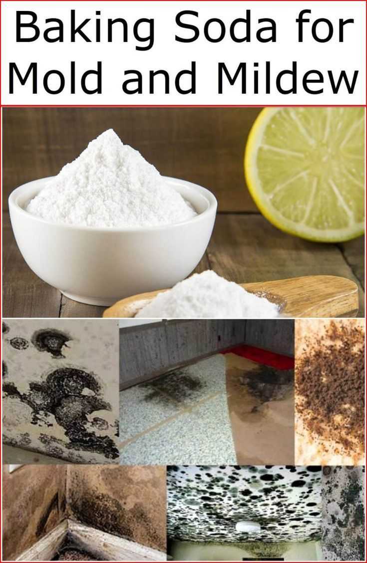 Baking soda for mold and mildew baking soda uses and diy