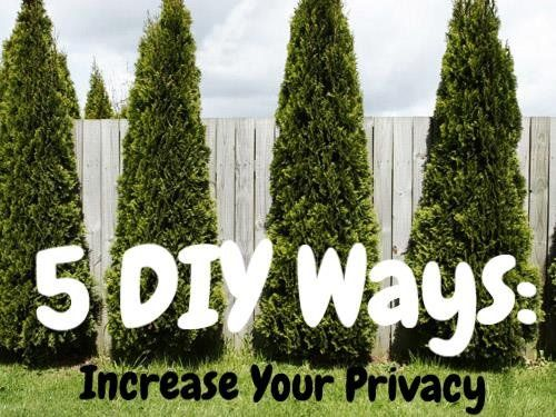 5 diy ways increase backyard