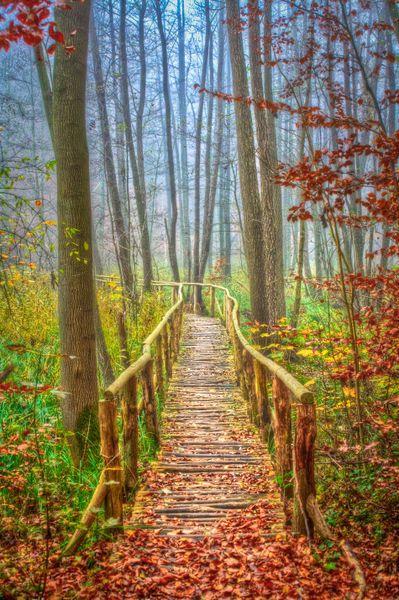 'Herbstbruecke' von Andres Glückert bei artflakes.com