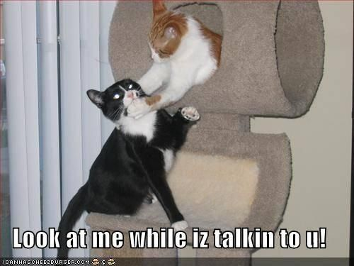 Iz talkin!