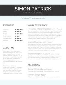 Word Resume Template  Career    Template Modern