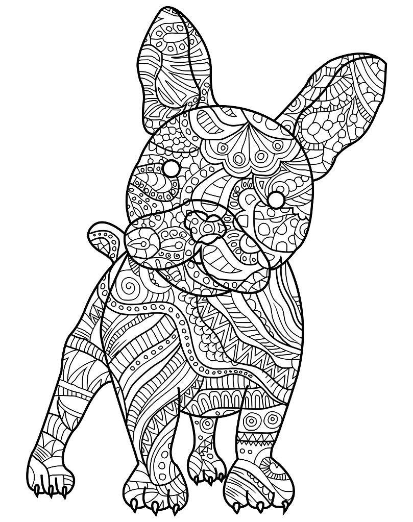 Pin Von Isabel Meier Auf Malen Malvorlagen Tiere Ausmalbilder Wenn Du Mal Buch