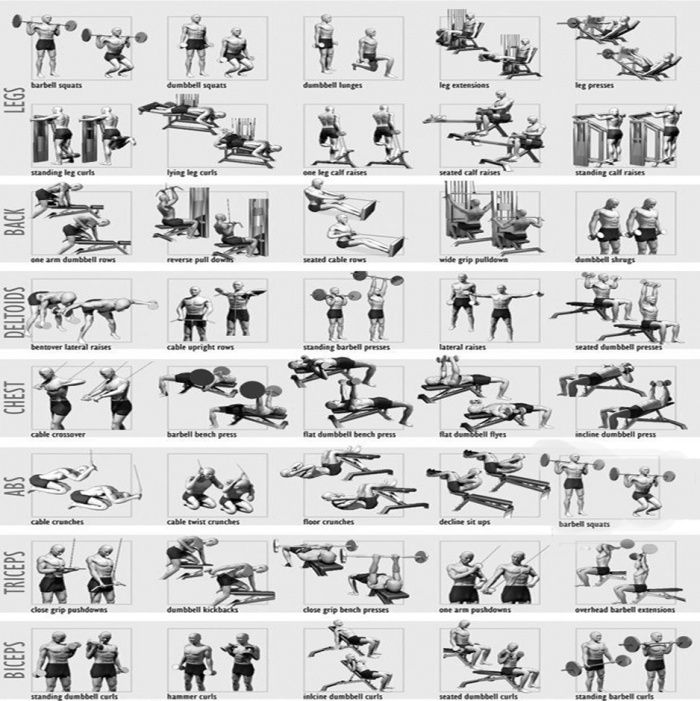 full body workout plan - healthy fitness training routine chest