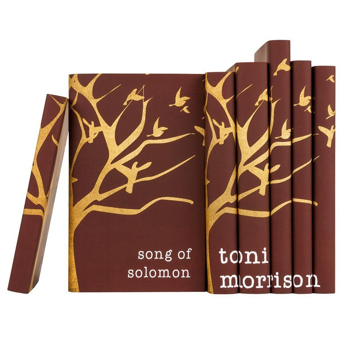 Toni Morrison Book Set