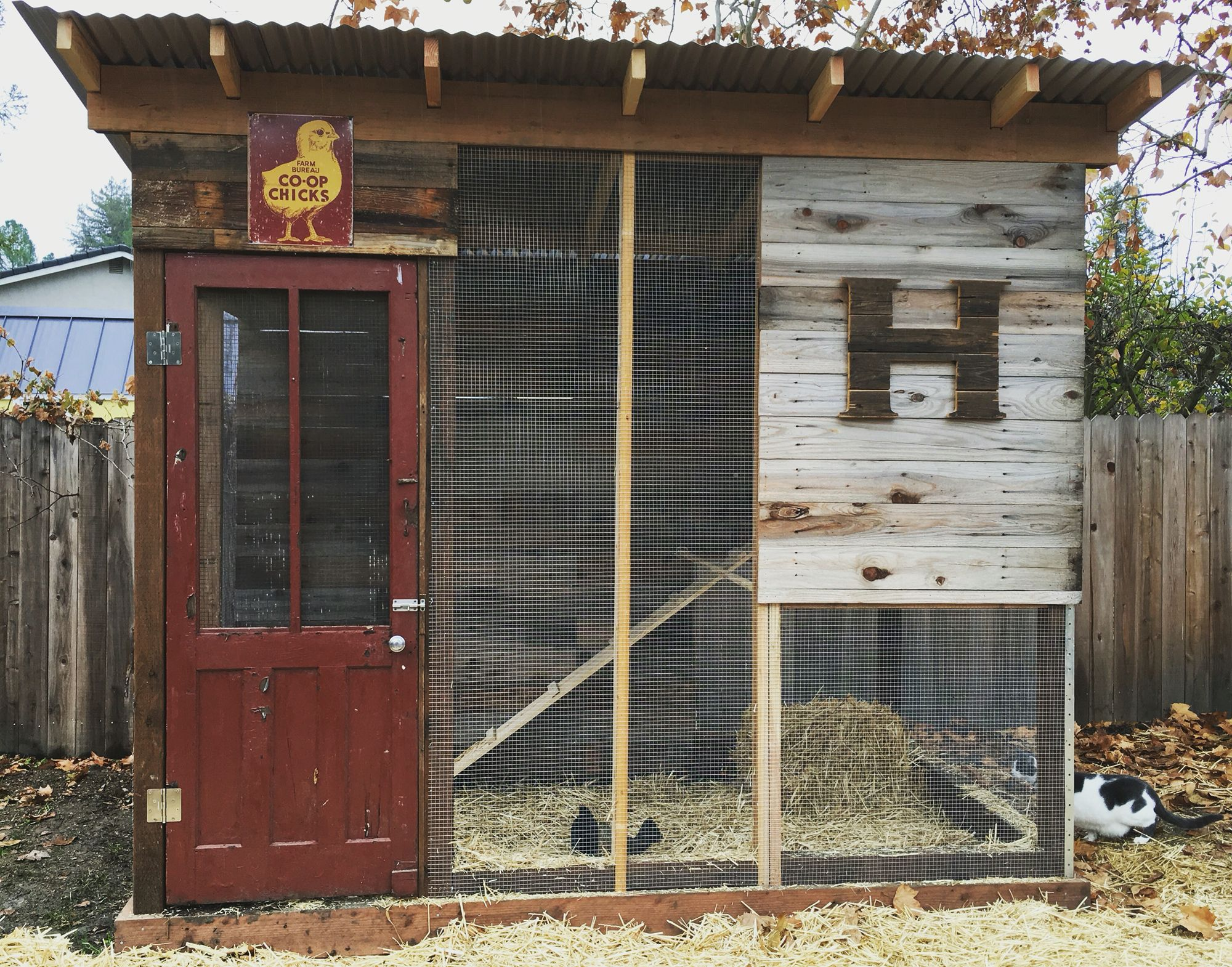 chicken coop old reclaimed red door and old fence for siding my