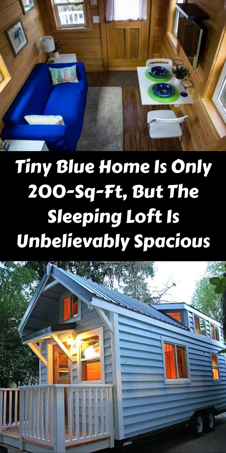 Tiny Blue Home Is Only 200-Sq-Ft, But The Sleeping Loft Is Unbelievably Spacious