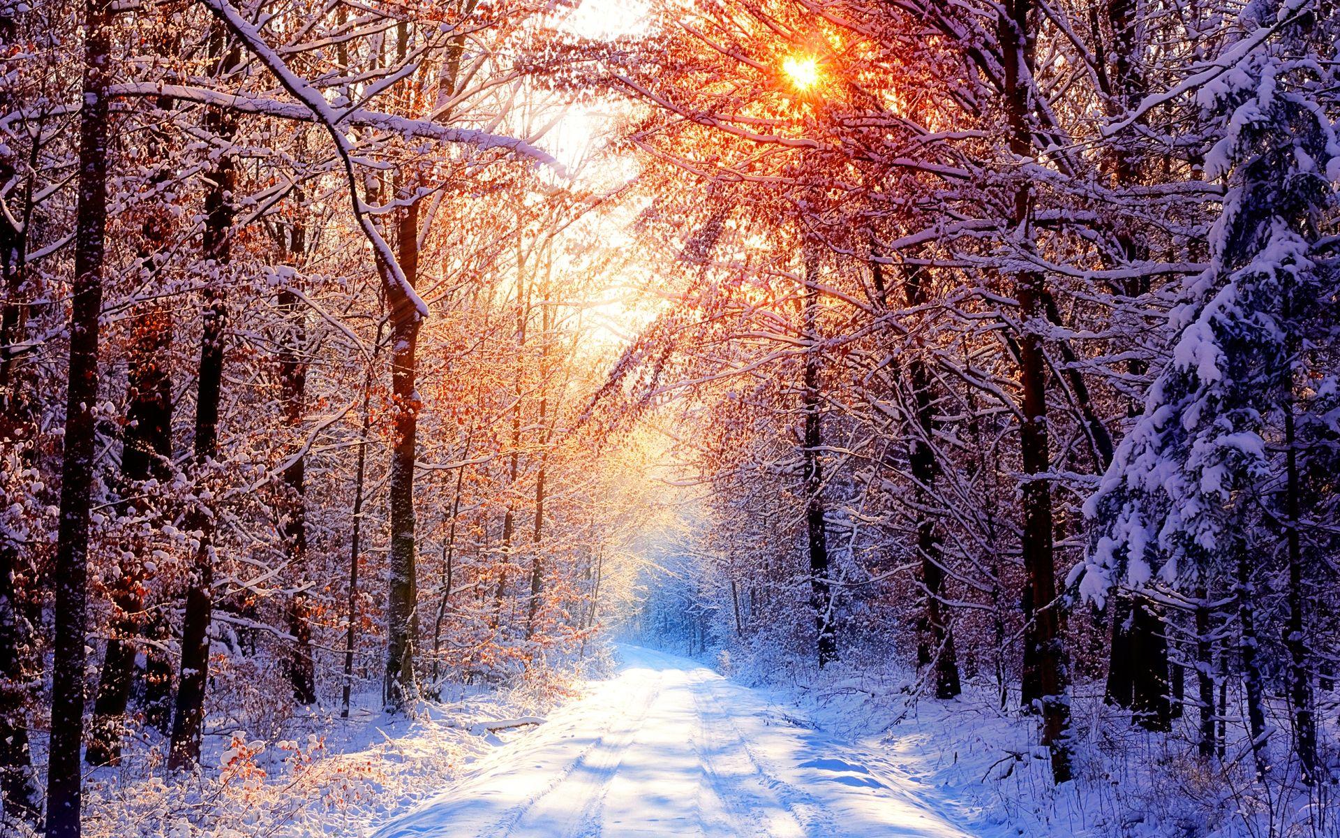 foto de Fond d écran hd : paysage neige Paysage de neige