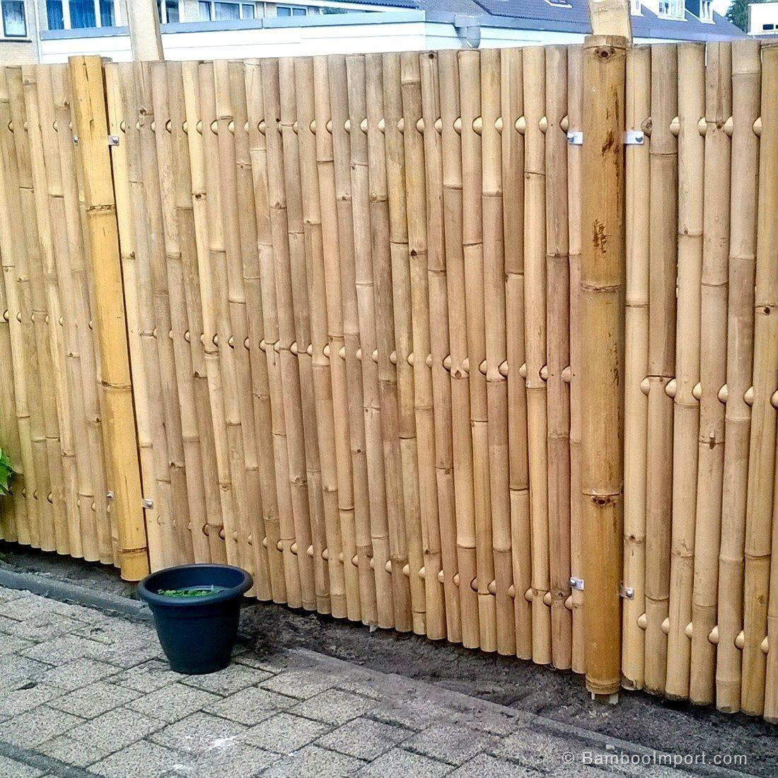 Bamboo Fence Panel Giant 180 X 180 Cm Whasapp Bamboo Fence Giant Panel Wha Bamboo Bamboo Fence Giant Panel Wha Wh