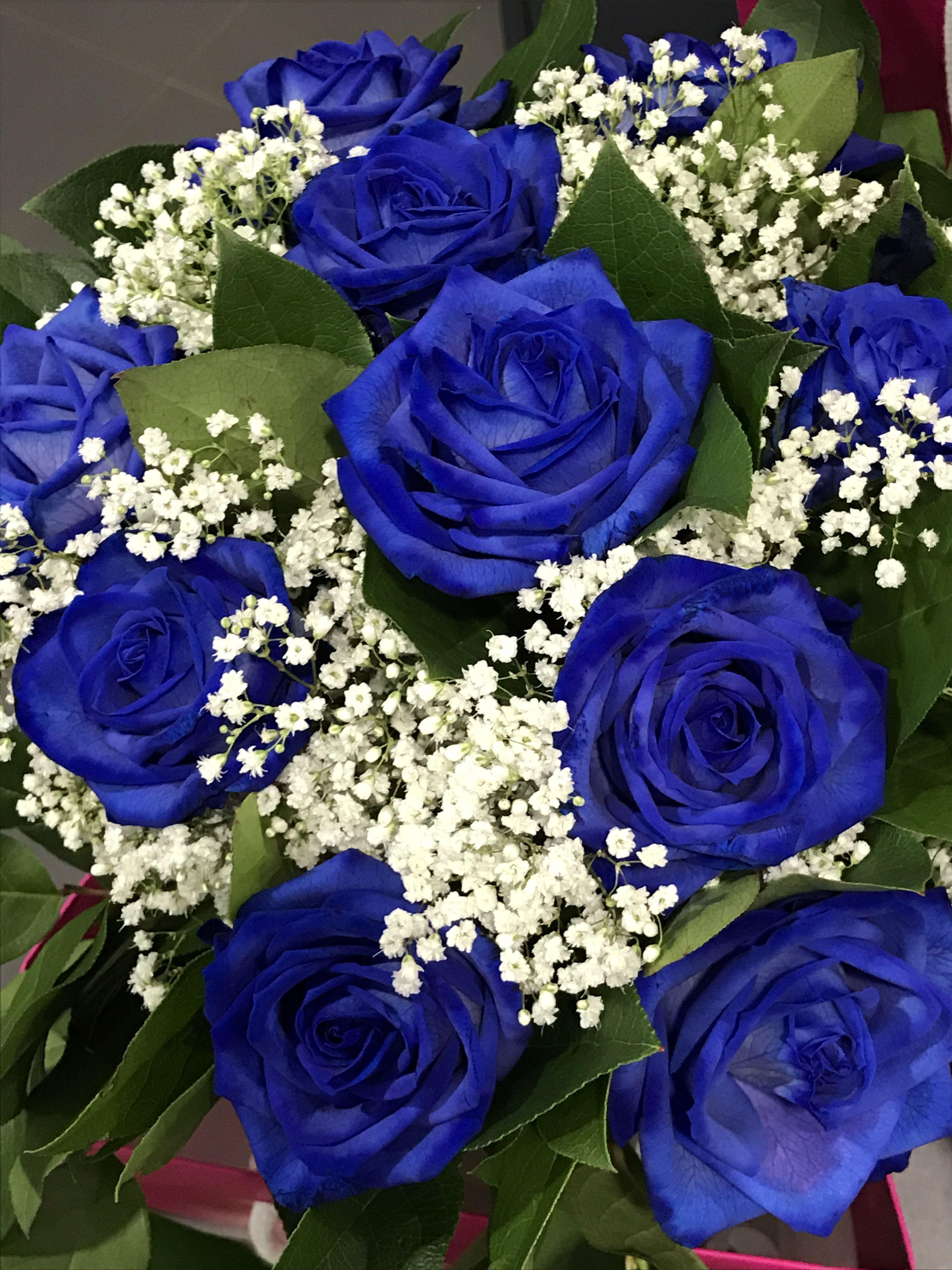Sfumature Di Blu Per Un Dolce Buongiorno Rose Roseblu