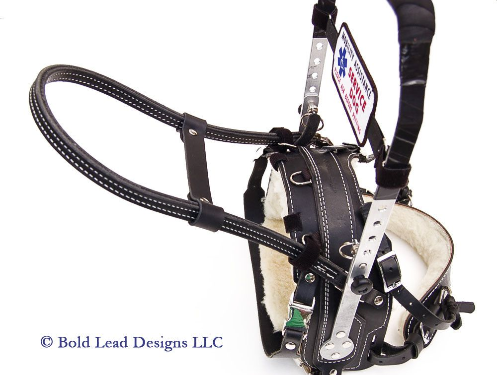Guide Handle On Mobility Support Harness By Bold Lead