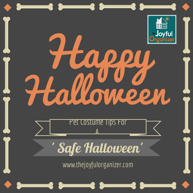 10 Halloween Safety Tips for Pets Halloween safety tips