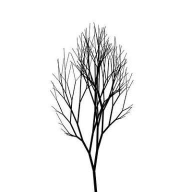 Resultado de imagem para minimalist tree tattoo   平面版式 ...