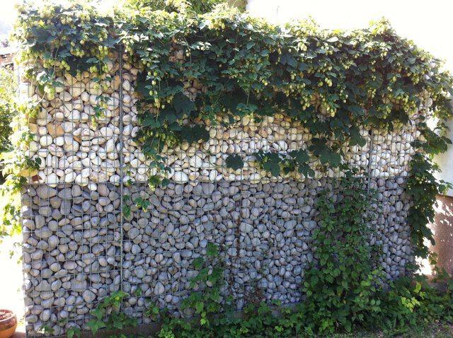 Gabion Wall Garten Naturzaun Gartenzaun Ideen