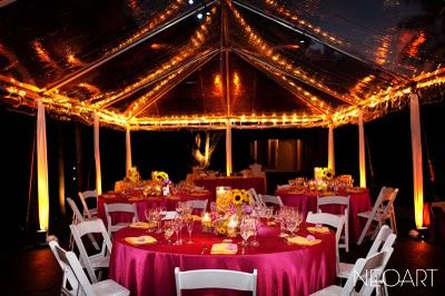 Bonnet House Clear Tent With Lights Option Bonnet House House Clear Tent