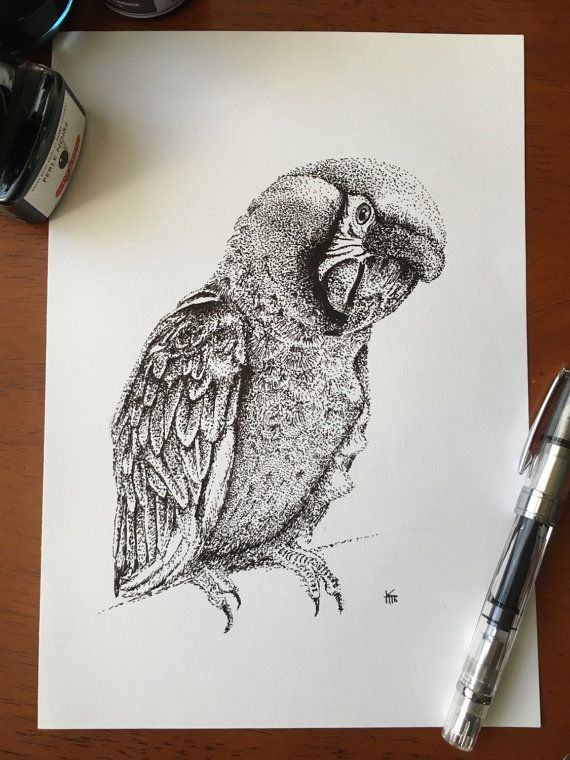 Macaw Pointillism Print | Stippling art, Dotted drawings ...