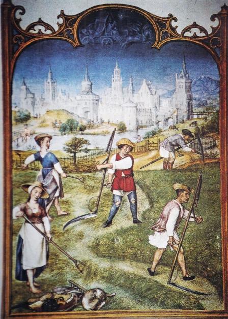 Risultati Della Ricerca Per Medioevo Tuttatoscana Medioevo Biblioteca Ricerca