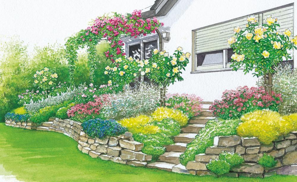 Terrassenbeete Auf Hohem Niveau Gartengestaltung Garten Landschaftsbau Bepflanzung