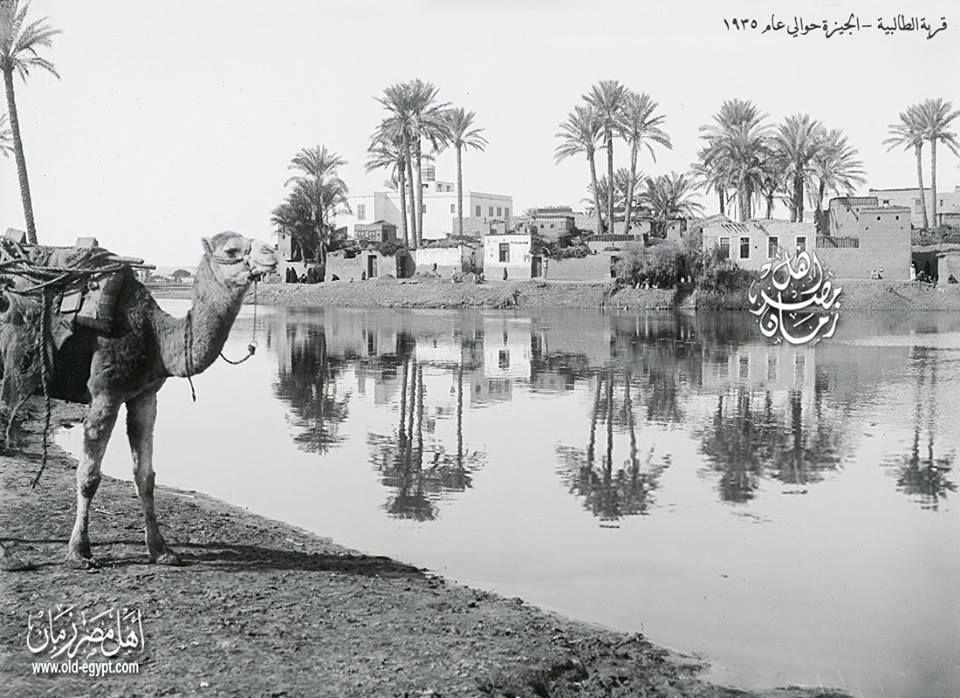 الجيزة قرية الطالبية حوالي عام 1935 Egypt Old Egypt Egyptian