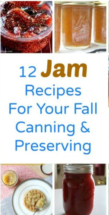 12 jam recipes for your fall canning and preserving fruit 12 jam recipes for your fall canning and preserving forumfinder Gallery