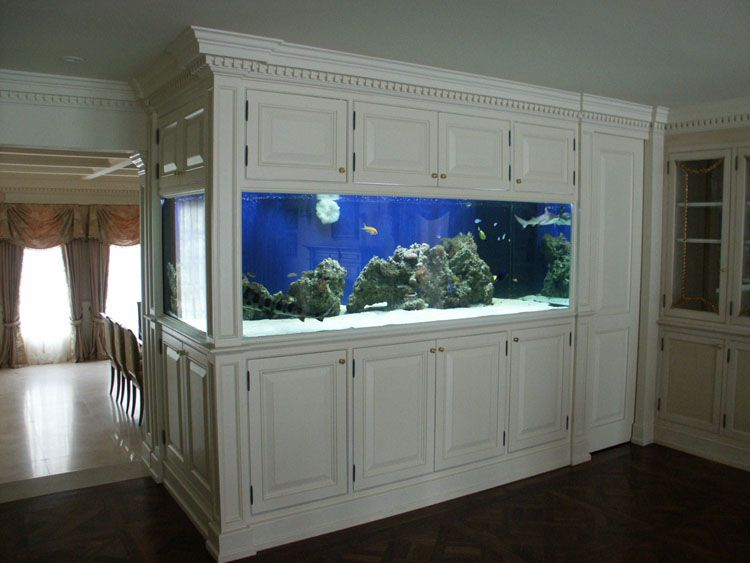 home shark tank | shark tanks custom cabinetry and shark ...