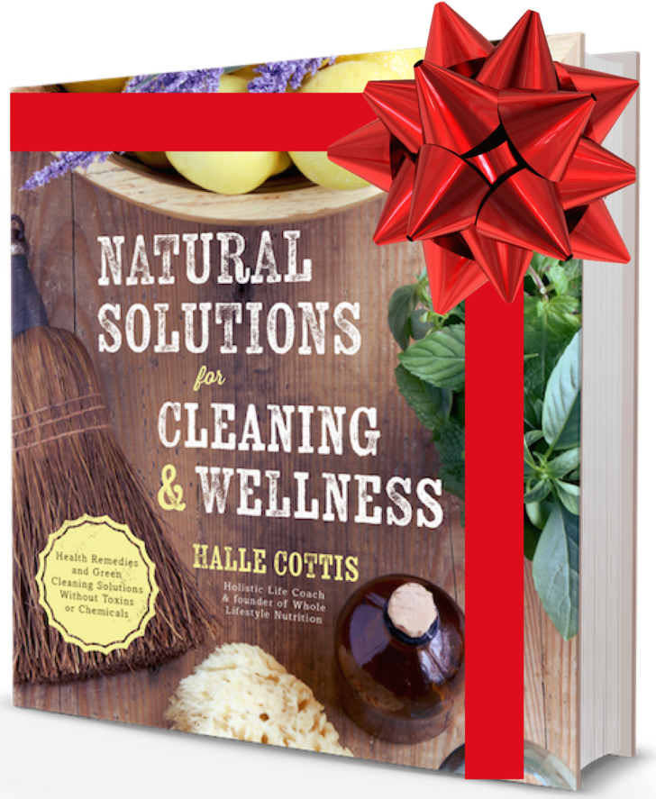 Natural Solutions For Cleaning and Wellness Book Natural