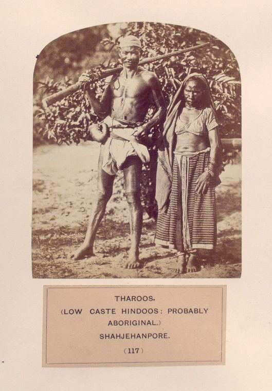 Tharoos, Hindus Aborígenes,  Shahjehanpore.