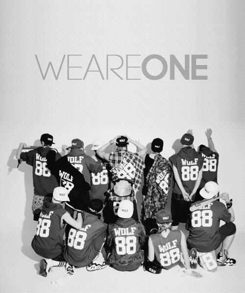 Exo we are one in korean