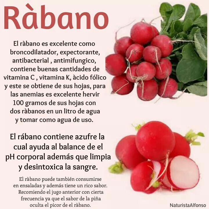 El Rábano Rico Y Saludable Health Tips Food Hacks Nutrition