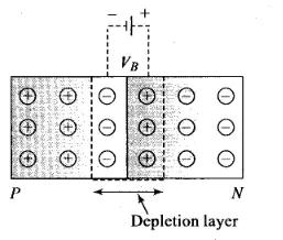 NCERT Exemplar Class 12 Physics Chapter 14 Semiconductor