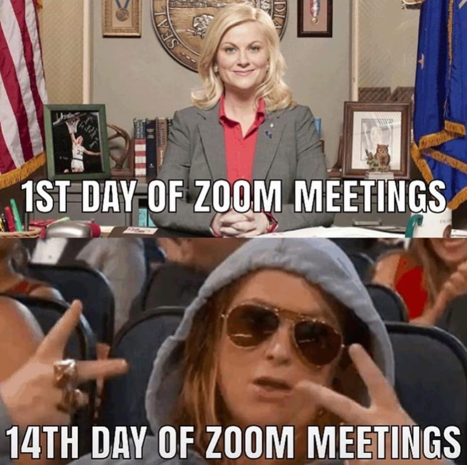 20 Zoom Meeting Memes You Have Experienced For Sure Work Humor Meetings Humor Funny Memes