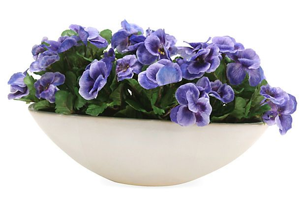9 Pansies in Oval Bowl, Purple on OneKingsLane.com