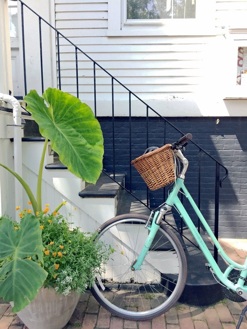 Prime 5 Friday 5 Methods To Reside That Nantucket Life