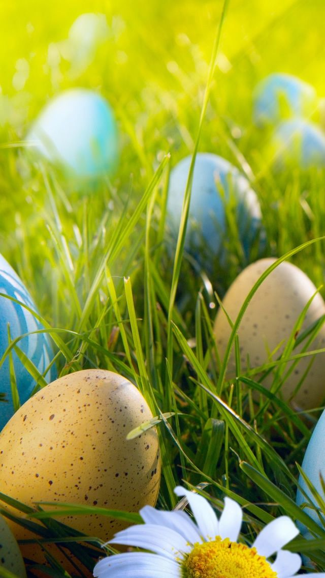 30 Cute Easter Iphone Wallpapers Happy Easter Wallpaper Easter