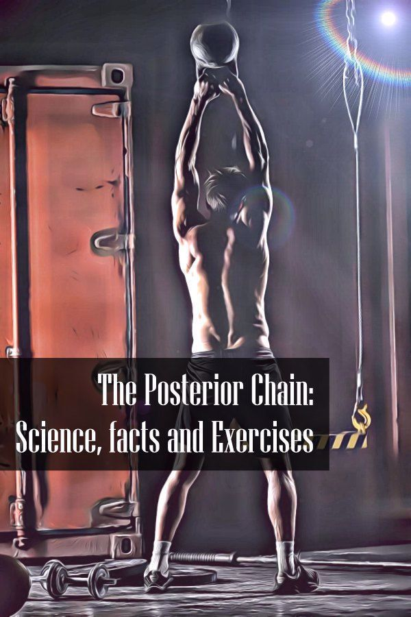Posterior chain training. Science, facts, exercises and workouts. The compete guide to posterior cha...