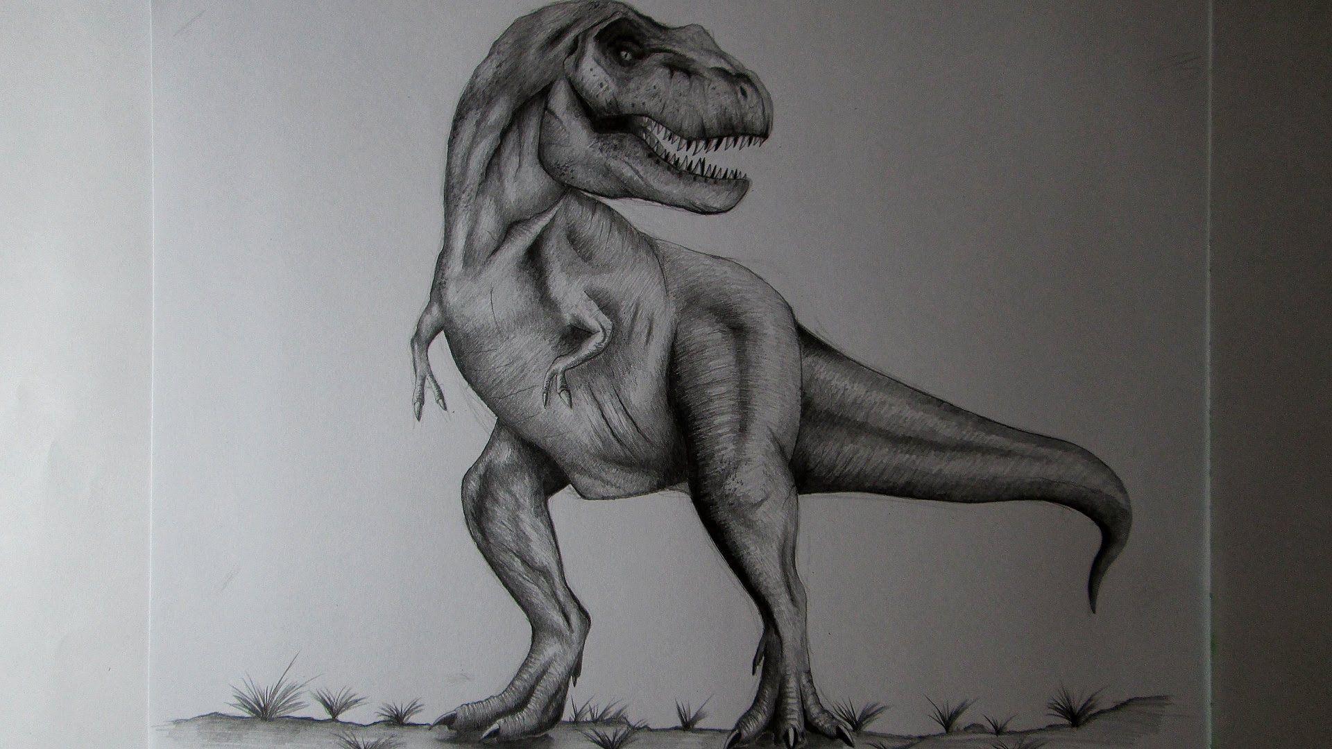 Cómo Dibujar Un Tiranosaurio Rex A Lápiz Paso A Paso