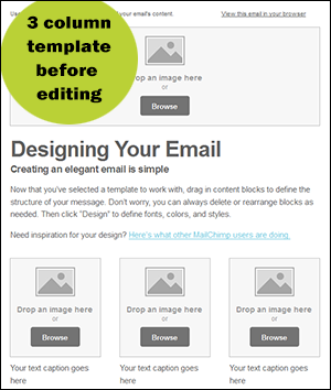Basic Column Template Perfect For Your Store Newsletter Email - 3 column email template
