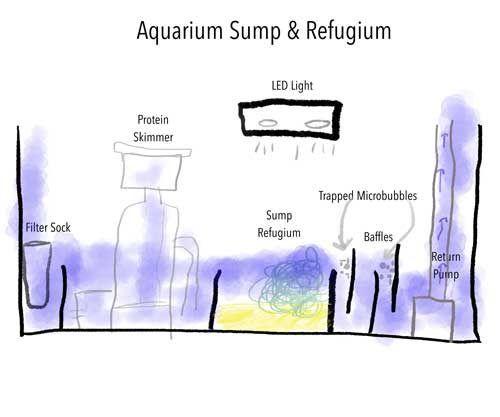 aquarium sump and refugium design schematic aquariums general