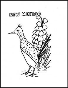 Coloring Sheets State Birds Flowers New Mexico Roadrunner