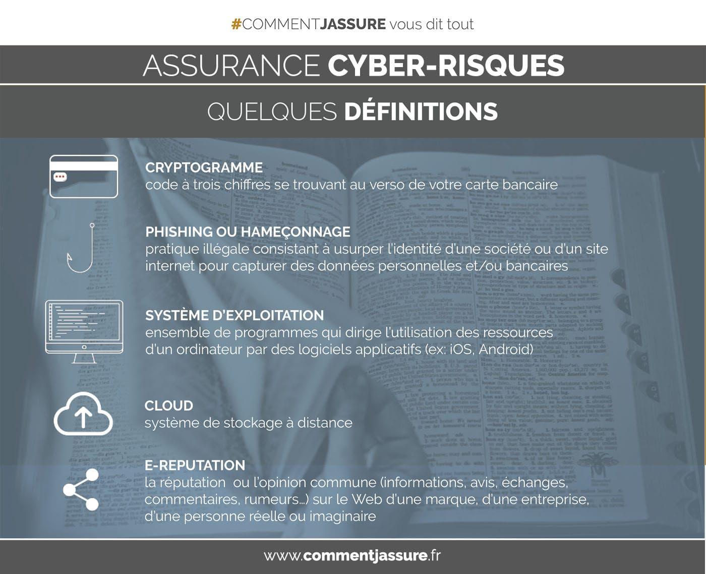 Infographie Assurance Cyber Risques Quelques Definitions
