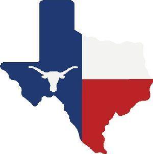 Texas Flag Longhorn Texas History Loving Texas Republic Of Texas