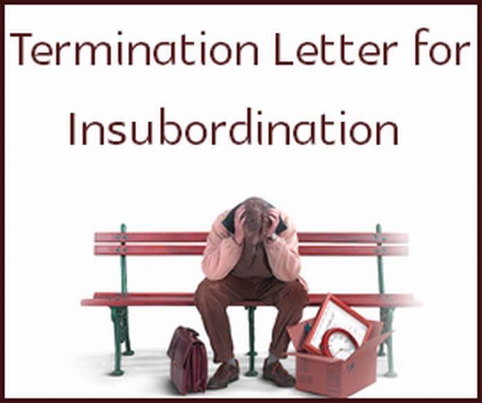 sample termination letter for insubordination formats letters - sample warning letter
