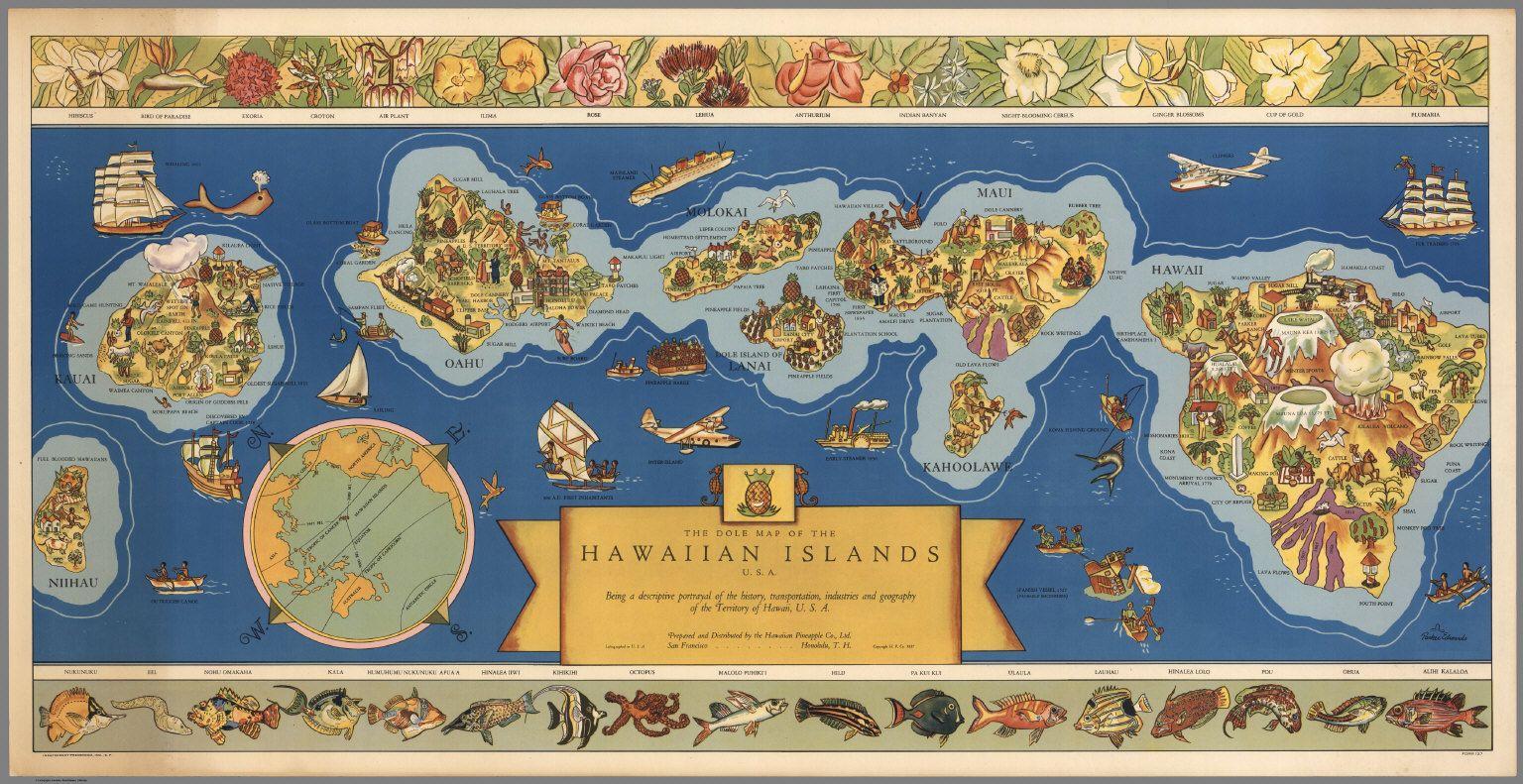 8504000.jpg 1,536×791 pixels Hawaiian islands, Vintage